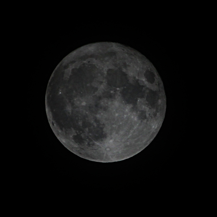 supermoon14nov2016