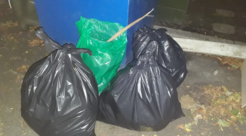 1st Gatley Scouts clean up – in more ways than one!